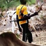 "Group Mourns Renewed Killings in Benue as Fulani Group Insists ""Cattle Colony"" for Herders"
