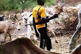 Fulani herdsman armed with a Kalashnikov