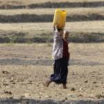 Strongest El Nino in 20 years ends