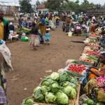 UN: Millions of people face acute hunger in DRC