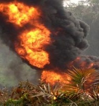 Fire Guts Spill Site At Shell's Oil Field in Bayelsa