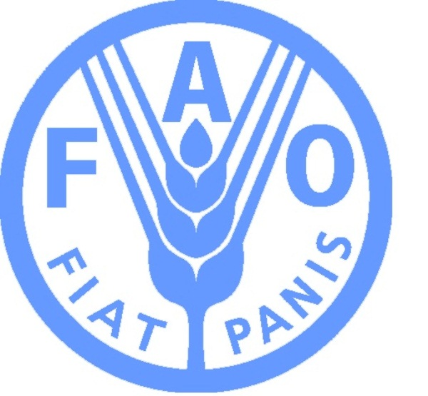 Good harvests and ample stockpiles continue to drive international food prices down / Biannual FAO Food Outlook report and new Food Price Index released
