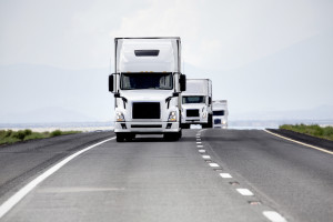 TransEast takes highway to success with SAP BusinessOne