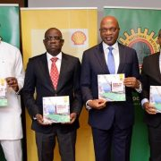 Shell Targets2,400MW Equivalent Of Electricity From New Gas Supply Project