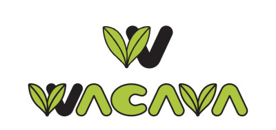 """SACRA MUSIC Commences Global Animation Song Cover Project """"WACAVA Project""""!"""