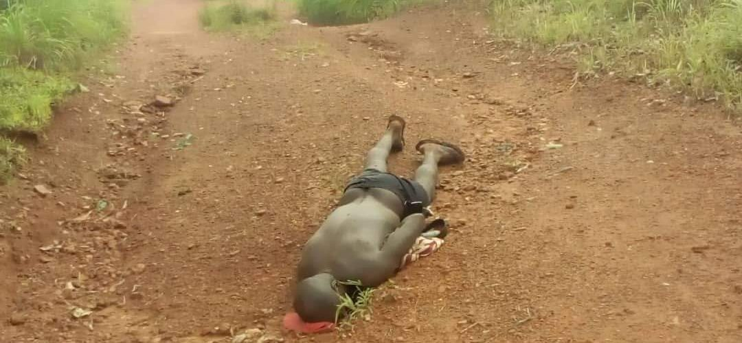 Fulani Herdsmen Caught After Killing Native At Ihube