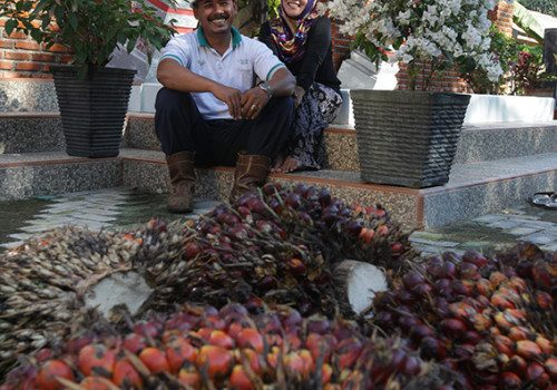 Kao, Apical and Asian Agri Launch 'SMILE' Program to Help Oil Palm Smallholders Improve Yields, Acquire Certifications, and Secure Premiums