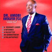 Anambra 2021: Amobi Nwokafor, Accomplished Accountant And Intellectual Throws Hat To The Ring
