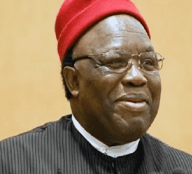 """Ohaneze Raises The Alarm Over """"Shoot-at-sight"""" Order In South East"""