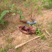 Herdsmen Kill Priest, Many Others In Attack On Ebonyi Communities