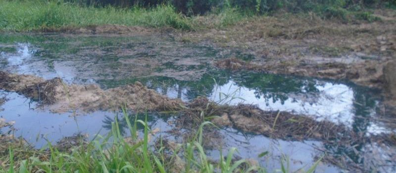 Residents Of Ikarama In Bayelsa Bemoan Impact Of Spill From Shell's Ruptured Pipeline