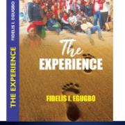 Okowa, Bello, Ihedioha, Others For Book Launch